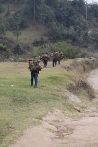 8 Carrying firewood 2